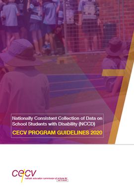 NCCD Program Guidelines 2020