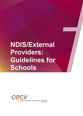 NDIS/External Providers: Guidelines for Schools